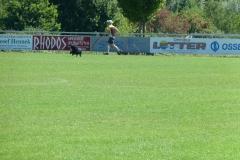 fussball_ledig_vs_verheiratet_20120823_1001102186