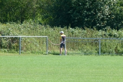 fussball_ledig_vs_verheiratet_20120823_1324294736