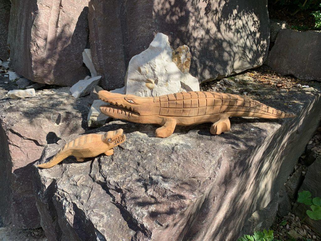 Krokodile die, die Sieger der Trails bekommen.